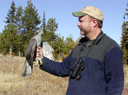 James Watson is a raptor expert with the Dept of Fish&Wildlife